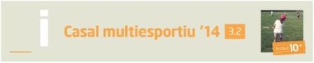 Casal_multiesportiu2014-15